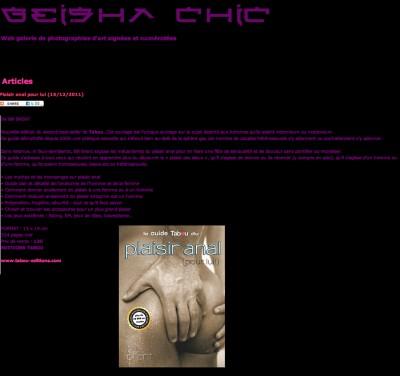 Article Geisha Chic - Guide du plaisir anal pour lui