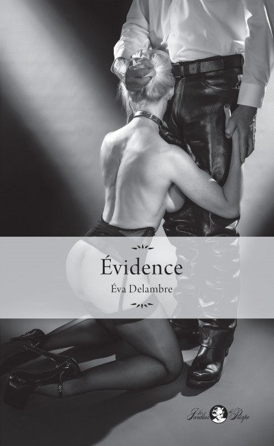 Evidence : un roman prenant, troublant, racontant une très belle histoire BDSM.